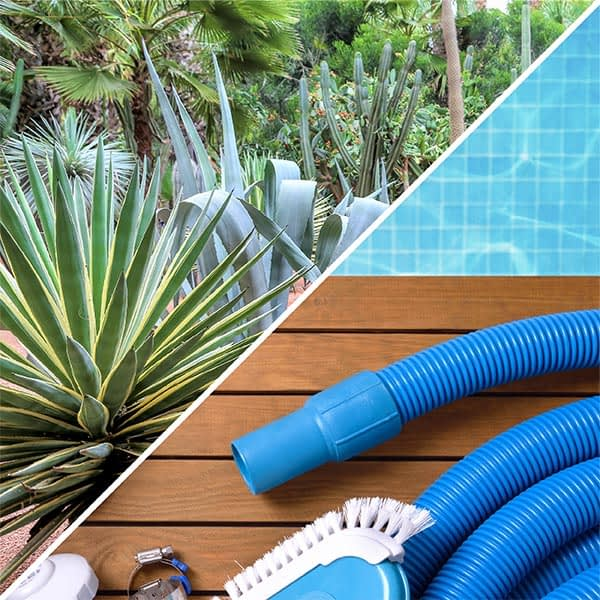 pool and garden maintenance concierge Saint-Martin